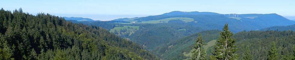 Geführte Trike Touren im Schwarzwald, in der Schweiz und in Frankreich